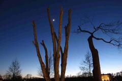 Venus, Månen och Jupiter 2016-02-26